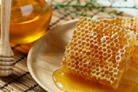 Бизнес-план пчеловодства